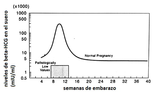 figura 4.1.3
