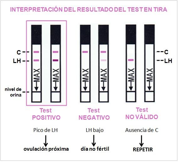 test de ovulacion EyF